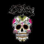 exotico big